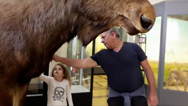 Взрослые и дети в музее